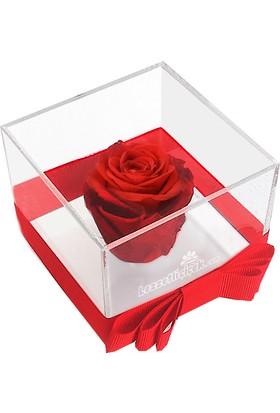 Lezzetli Çiçek Sevgiliye Hediye Solmayan Gül