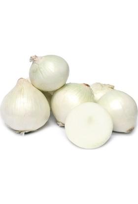 Arzuman Beyaz Soğan 5 Gram