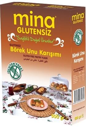 Mina Glutensiz Börek Unu Karışımı 500 gr