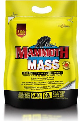 Mammoth Mass 6800 Gr (Çikolata)