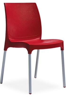 Novussi Sunny Model Sandalye 6 Adet (Kırmızı Renk)