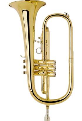 Bach Flugel Horn (FH200)
