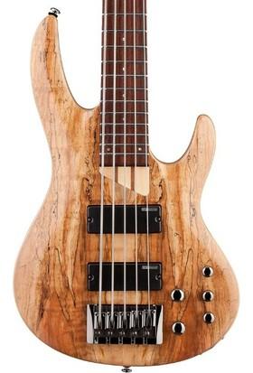 ESP LTD Lb205Smns 5 Telli Bas Gitar