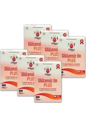 Sinangil Glutensiz Un Plus 500Gr X 6 Adet