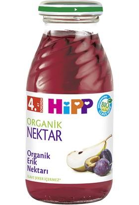 Hipp Organik Erik Nektarı 200 ml