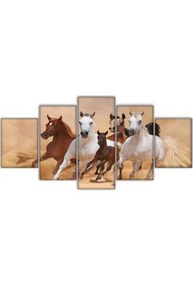 Met Beyaz Atlar 5 parça Kanvas Tablo
