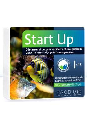 Prodibio Start Up 12 Ampül