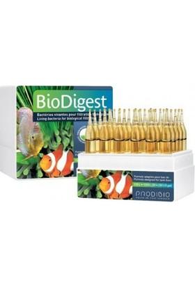 Prodibio BioDigest 12 Ampul