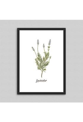 Lavender Çerçeveli Poster