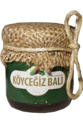 Köyceğiz Balı Çam Balı 45G Cam Kavanoz