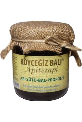 Köyceğiz Balı Arı Sütü&Bal&Propolis Karışımı 250G Cam Kavanoz