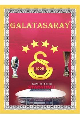 Popvitrin Tablo Halı - Galatasaray 50 x 70 cm