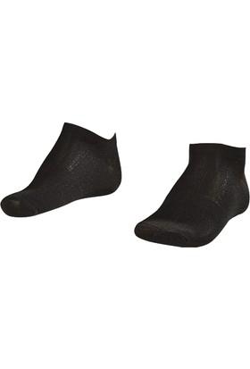 Lescon La-2182 Siyah Erkek Patik Çorap 40-45 2'Li