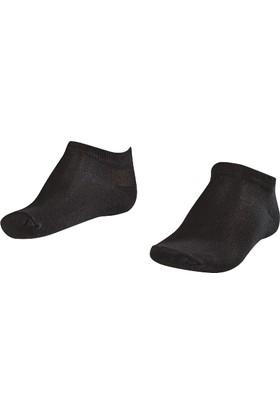 Lescon La-2183 Siyah Erkek Patik Çorap 36-40 2'Li