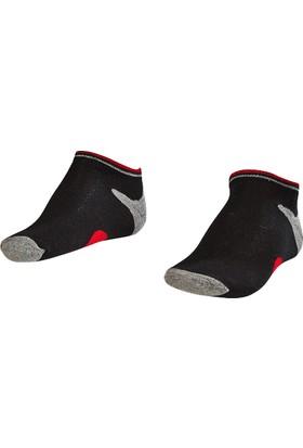 Lescon La-2187 Siyah Erkek Patik Çorap 31-35 3'Lü