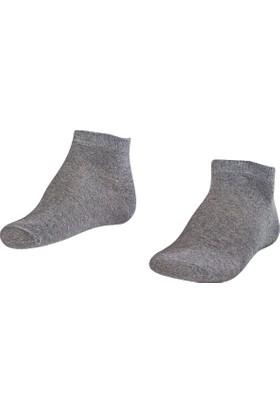 Lescon La-2184 Grimelanj Erkek Patik Çorap 40-45 2'Li
