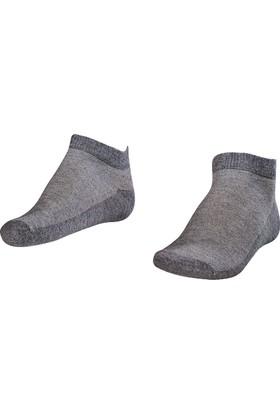 Lescon La-2183 Grimelanj Erkek Patik Çorap 40-45 2'Li
