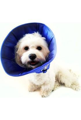 DogTorin Elizabeth Mavi Yakalık S Antibakteriyel