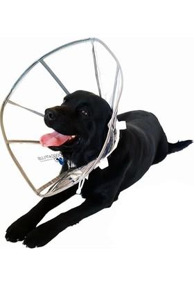 DogCat Plus Elizabeth Şeffaf Yakalık S