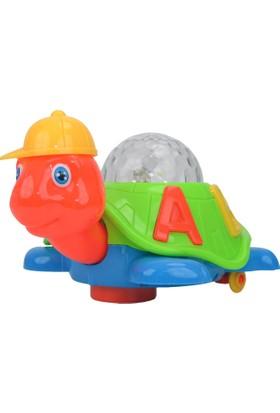Power Hob Okul Öncesi Zeka Eğitici Sihirli Kaplumbağa