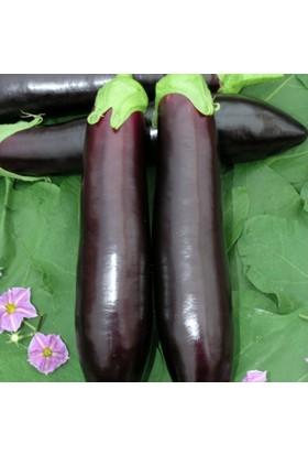 Yüksel Tohum Sülün Patlıcan Tohumu 25'li Paket