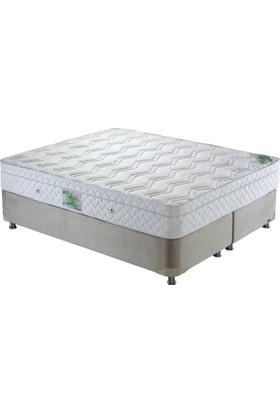 Dr Otto 80X160 Assıst Bed Pocket Yaylı Ergonomik Yatak