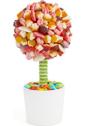 Şeker Şef Saklı Cennet