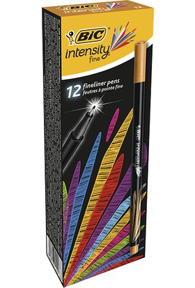 İntensity Fine Liner Kahverengi 12'Li Kutu