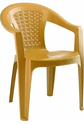 Gardelia Lux 4 Adet Plastik Koltuk Sandalye Takımı 1.Sınıf Kahve