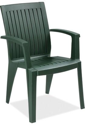 Papatya Bahce Sandalyeleri Ve Fiyatlari Hepsiburada Com