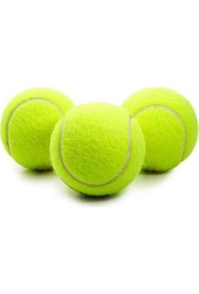 Percell Lion Köpek Oyun Topu Tenis 6 Cm ( 1 Adet )