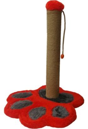Catia Pati Tabanlı Renkli Kedi Tırmalama 35*35*47 Cm