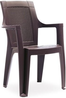 Gardelia R011 Elegance S Rattan Bahçe Mutfak Balkon Koltuk Sandalye