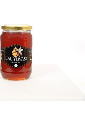 Bal Yuvası Zonguldak Alaplı Kestane Balı 500 gr