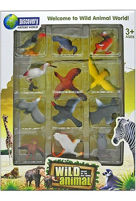 Simba Bird World Kuşlar Seti 12'li Set