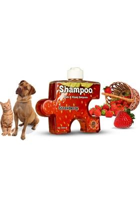Pet Love Puzzle Kedi Köpek Şampuanı Çilek 250 Ml