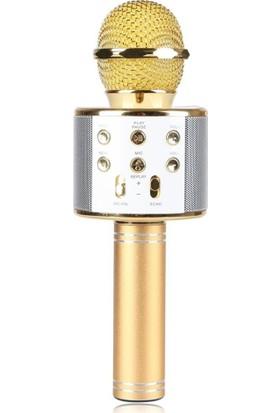 TechnoStyle Profesyonel Ses Kaydı Yapabilen Eğlenceli Karaoke Mikrofon WS858 Gold