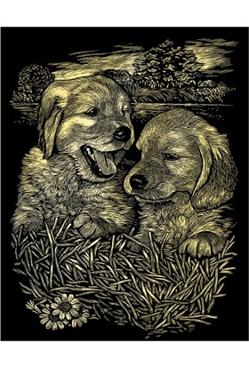 Reeves Altın Gravür Kazıma Seti - Yavru Köpekler