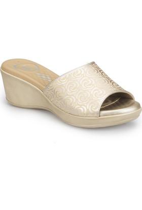 Polaris 81.111218.Z Altın Kadın Basic Comfort