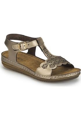 Polaris 81.158550.Z Altın Kadın Basic Comfort