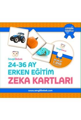 SevgiliBebek 24 - 36 Ay Zeka Kartları Seti (Türkçe - İngilizce)