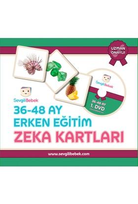 SevgiliBebek 36 - 48 Ay Zeka Kartları Seti (Türkçe - İngilizce)