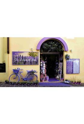 Mats Dekoratif Paspas 40X70 Sır Kapısı