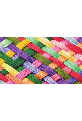Mats Dekoratif Paspas 40X70 Renkli Hasır