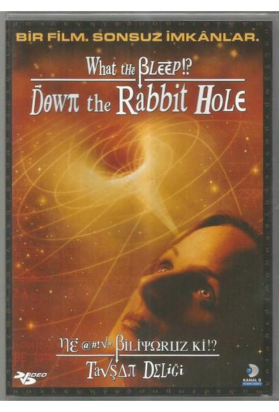 Ne Biliyoruz ki!? - Tavşan Deliği (What The Bleep!? Down The Rabbıt Hole) DVD