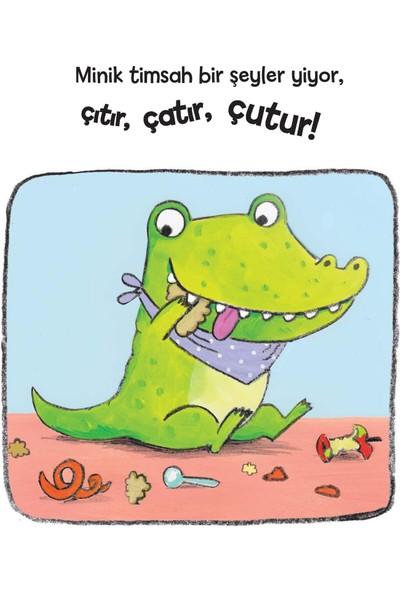 Haylaz Timsah Dişlerini Nasıl Fırçalar - Jane Clarke