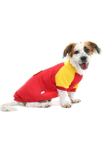 Dogi & Dog Red Ball Köpek Sweati
