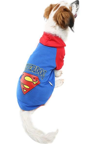 Dogi & Dog Süperdog Köpek Sweati