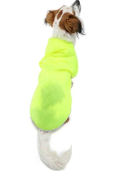 Dogi & Dog Neon Sarı Köpek Yağmurluğu