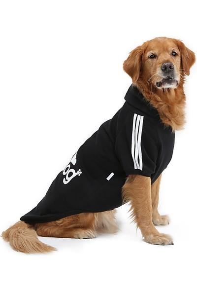 Dogi & Dog Siyah Adidog Köpek Sweati